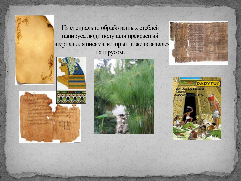 Из специально обработанных стеблей папируса люди получали прекрасный материал...