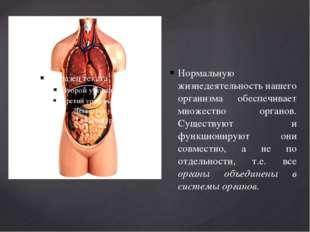 Нормальную жизнедеятельность нашего организма обеспечивает множество органов.
