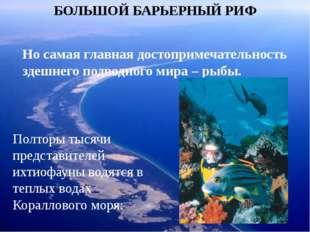 БОЛЬШОЙ БАРЬЕРНЫЙ РИФ Но самая главная достопримечательность здешнего подводн