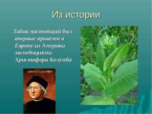 Из истории Табак настоящий был впервые привезен в Европу из Америки экспедици
