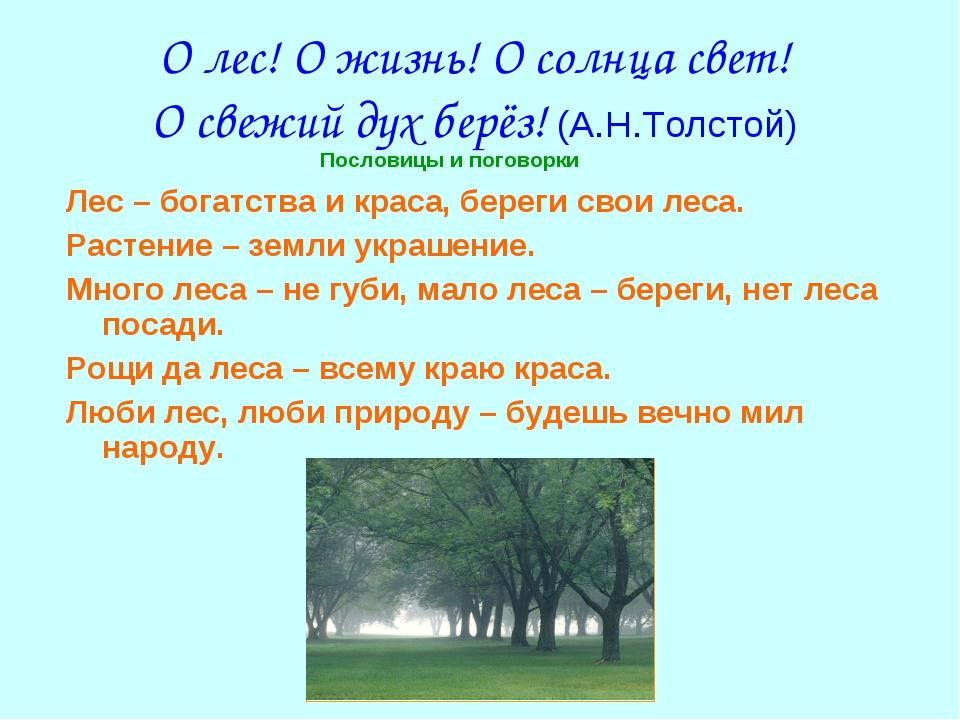 О лес! О жизнь! О солнца свет! О свежий дух берёз! (А.Н.Толстой) Лес – богатс...