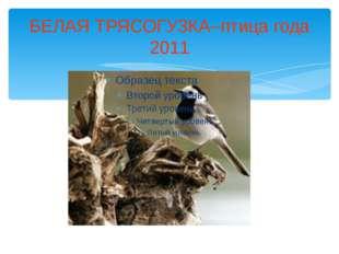 БЕЛАЯ ТРЯСОГУЗКА–птица года 2011