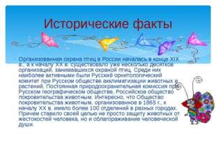 Организованная охрана птиц в России началась в конце XIX в., а к началу XX в.