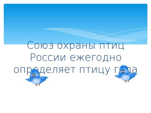 Союз охраны птиц России ежегодно определяет птицу года