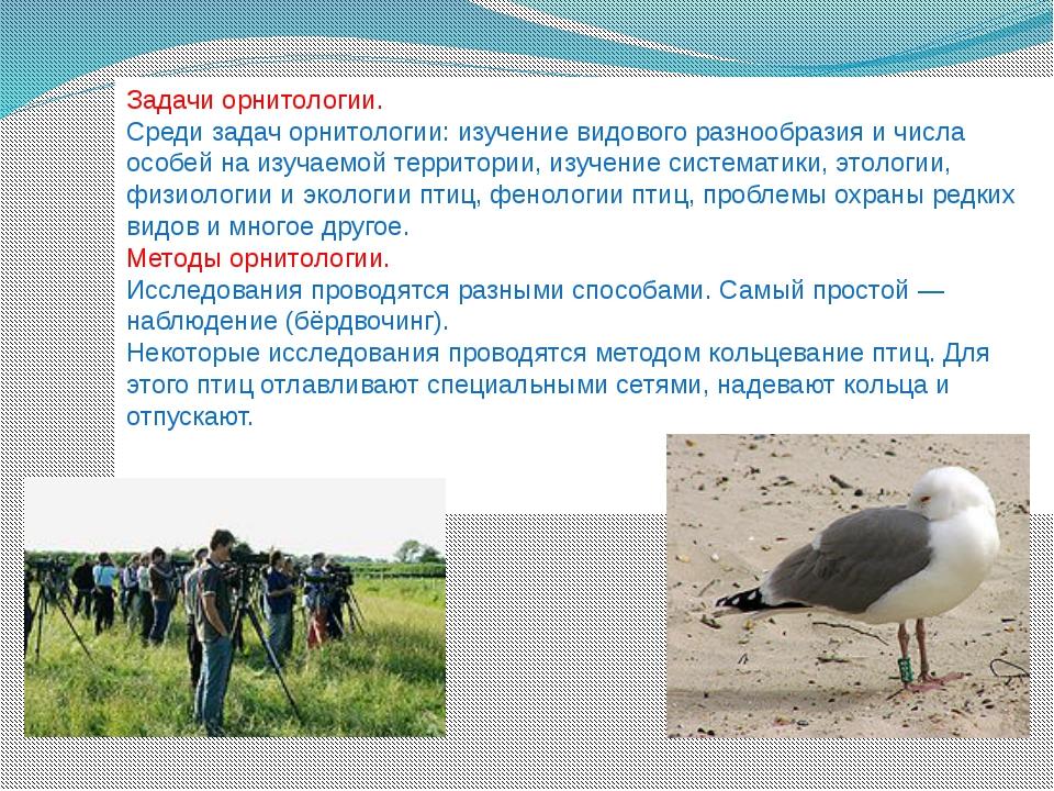 Задачи орнитологии. Среди задач орнитологии: изучение видового разнообразия и...