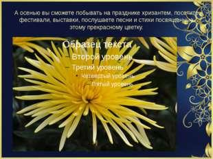 А осенью вы сможете побывать на празднике хризантем, посетите фестивали, выст