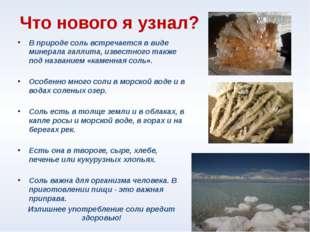 Что нового я узнал? В природе соль встречается в виде минерала галлита, извес