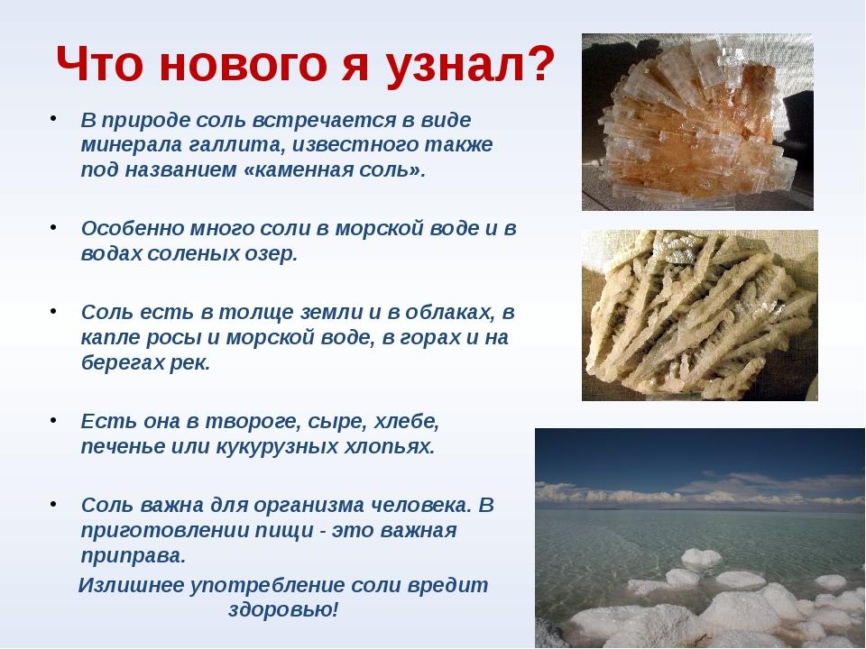 Что нового я узнал? В природе соль встречается в виде минерала галлита, извес...