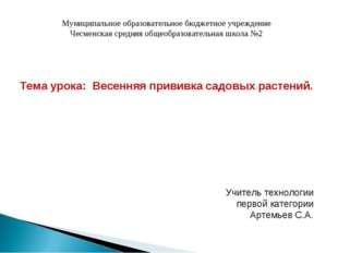 Муниципальное образовательное бюджетное учреждение Чесменская средняя общеобр