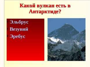 Какой вулкан есть в Антарктиде? Эльбрус Везувий Эребус