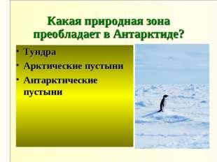 Какая природная зона преобладает в Антарктиде? Тундра Арктические пустыни Ант
