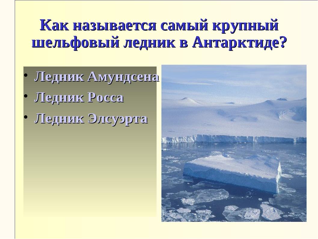 Как называется самый крупный шельфовый ледник в Антарктиде? Ледник Амундсена...