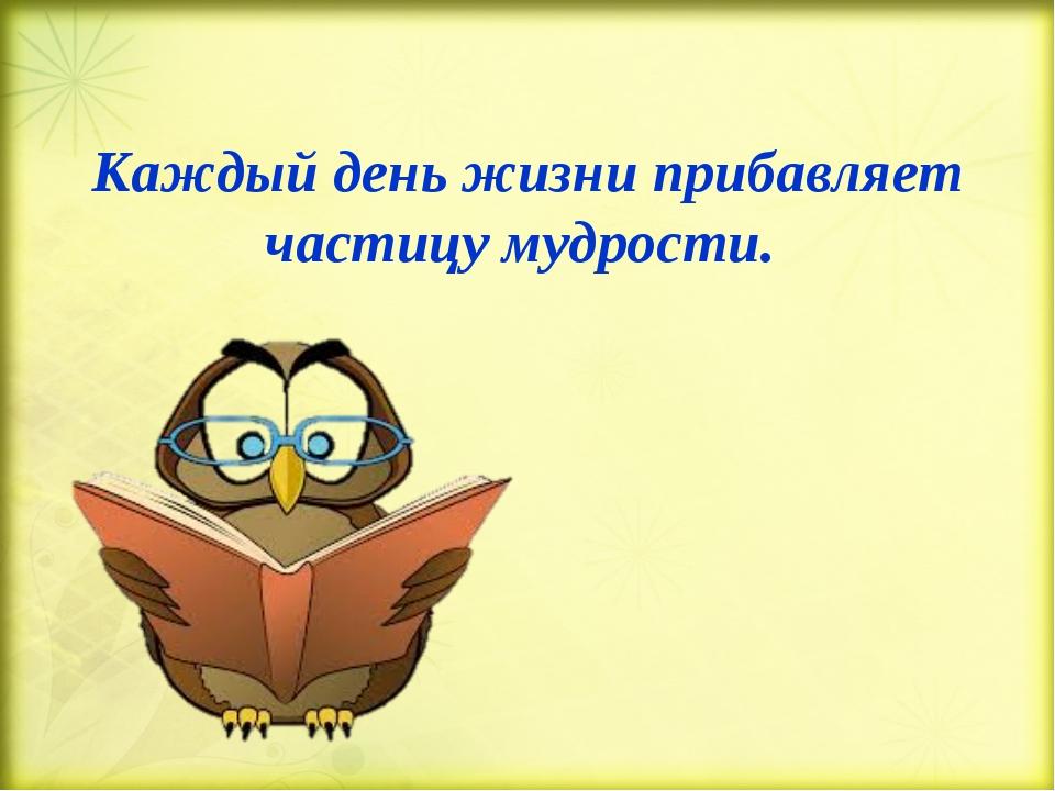 Каждый день жизни прибавляет частицу мудрости.