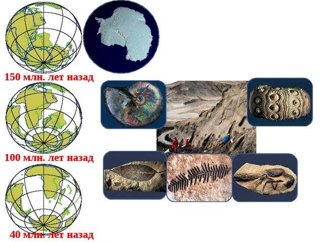150 млн. лет назад 100 млн. лет назад 40 млн. лет назад Оледенение Антарктиды...