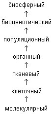 hello_html_m14eb754e.jpg