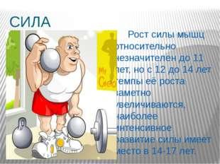 СИЛА  Рост силы мышц относительно незначителен до 11 лет, но с 12 до 14 лет