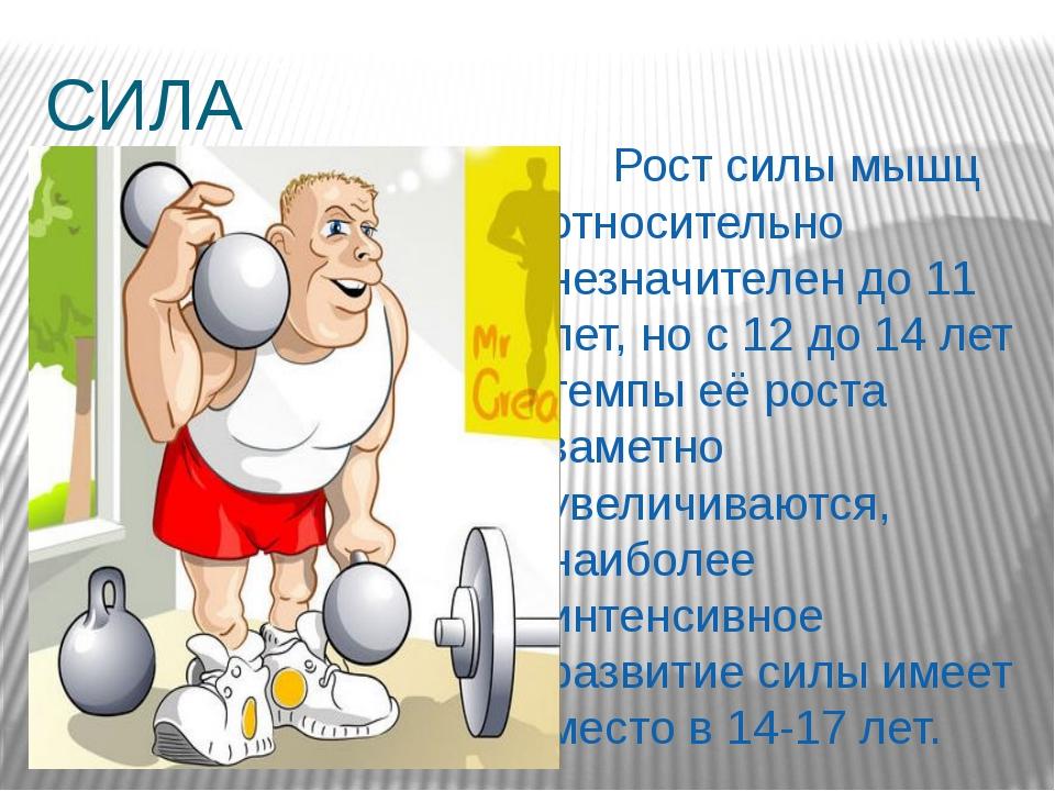 СИЛА  Рост силы мышц относительно незначителен до 11 лет, но с 12 до 14 лет...