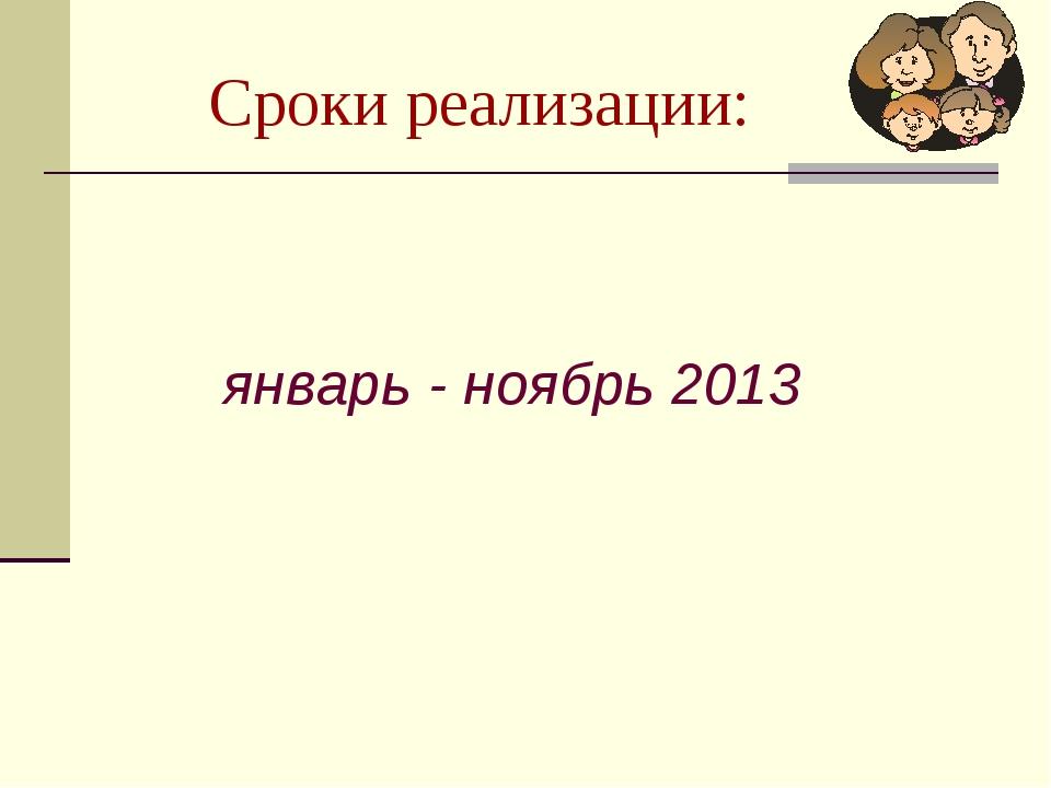 Сроки реализации: январь - ноябрь 2013