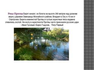 Река Протва Берет начало из болота на высоте 260 метров над уровнем моря у д