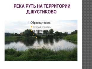 РЕКА РУТЬ НА ТЕРРИТОРИИ Д.ШУСТИКОВО