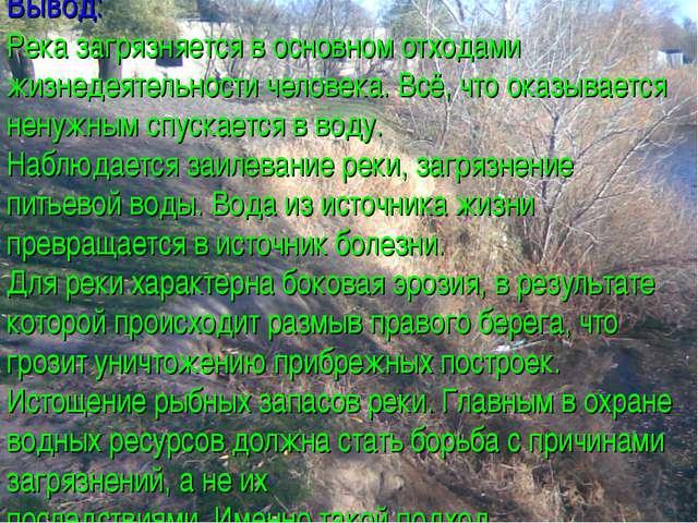 Вывод: Река загрязняется в основном отходами жизнедеятельности человека. Всё,...