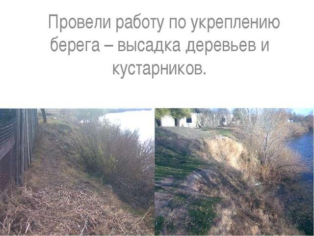 Провели работу по укреплению берега – высадка деревьев и кустарников.