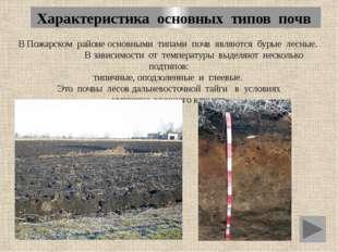 Характеристика основных типов почв В Пожарском районе основными типами почв я