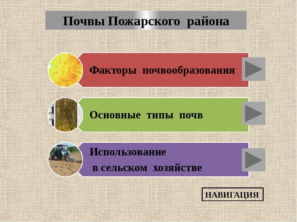 Основные типов почв