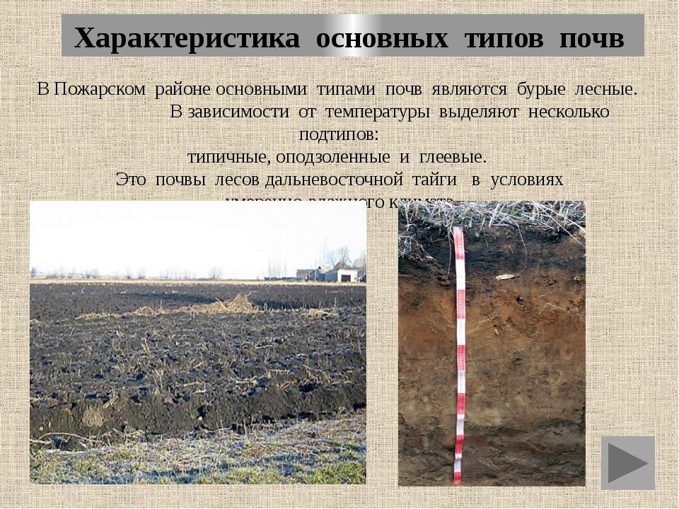 Характеристика основных типов почв В Пожарском районе основными типами почв я...