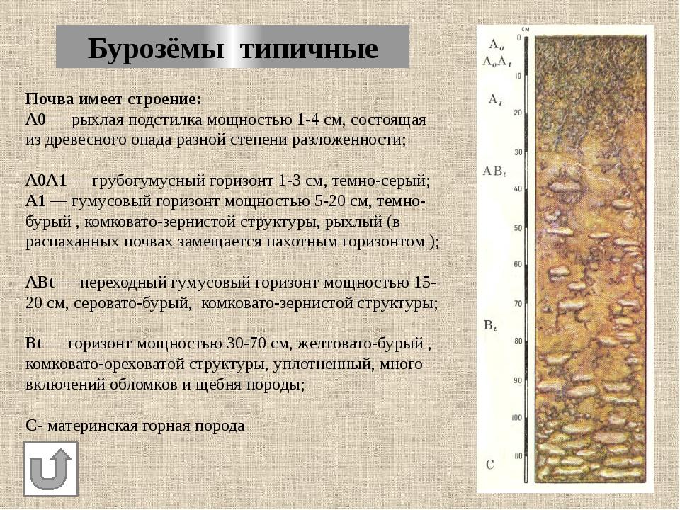 Почвенная карта Пожарского района