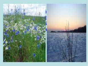 Весной – в цветном сарафане лежит, Зимой – в белой рубашке спит. *