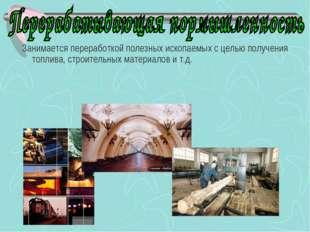 Занимается переработкой полезных ископаемых с целью получения топлива, строи