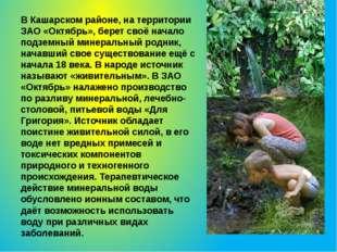 В Кашарском районе, на территории ЗАО «Октябрь», берет своё начало подземный