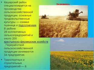 Экономика Кашарский район специализируется на производстве сельскохозяйственн
