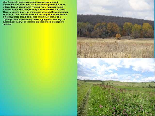 Для большей территории района характерен степной ландшафт. В течение лета сте...