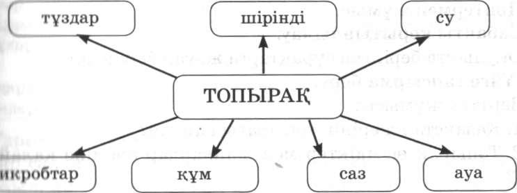 C:\Documents and Settings\Admin\DOCUME~1\Admin\LOCALS~1\Temp\FineReader10\media\image6.jpeg