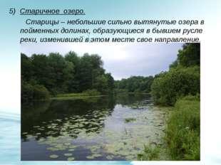 5) Старичное озеро. Старицы – небольшие сильно вытянутые озера в пойменных до