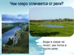 Чем озеро отличается от реки? Вода в озере не течет, как поток в русле реки.