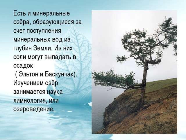 Есть и минеральные озёра, образующиеся за счет поступления минеральных вод из...