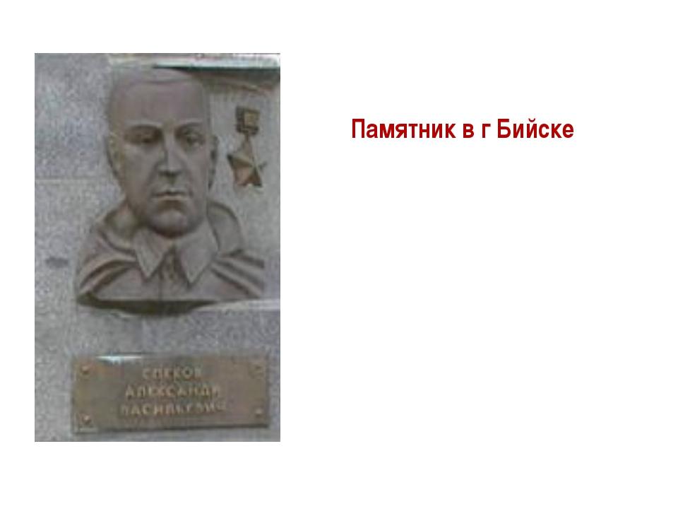 Памятник в г Бийске