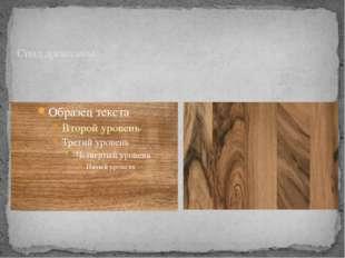 Спил древесины
