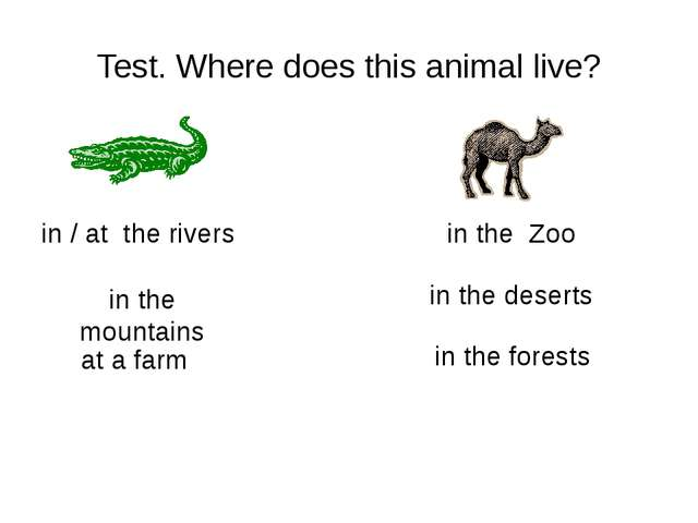 Test. Where does this animal live? in the mountains in the trees/ forests at...
