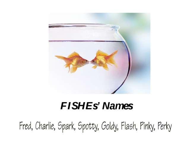 HAMSTERS' Names