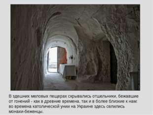 В здешних меловых пещерах скрывались отшельники, бежавшие от гонений - как в