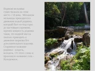 Водяная мельница существовала на этом месте с 18 века. Механизм мельницы при