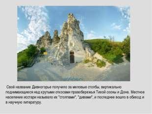 Своё название Дивногорье получило за меловые столбы, вертикально поднимающие