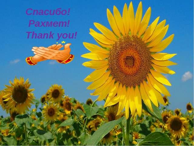 Спасибо! Рахмет! Thank you!
