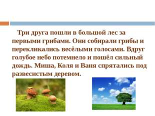 Три друга пошли в большой лес за первыми грибами. Они собирали грибы и перек