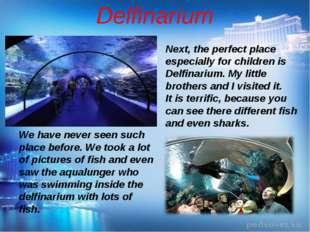Delfinarium Next, the perfect place especially for children is Delfinarium. M