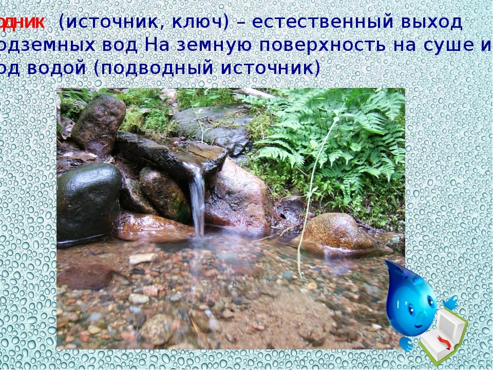 Родник (источник, ключ) – естественный выход подземных вод На земную поверхно...